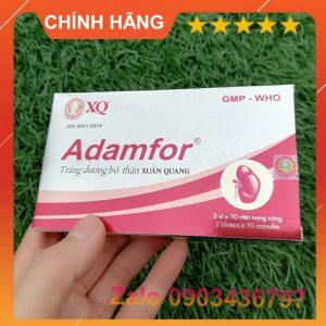 hop-adamfor-chinh-hang