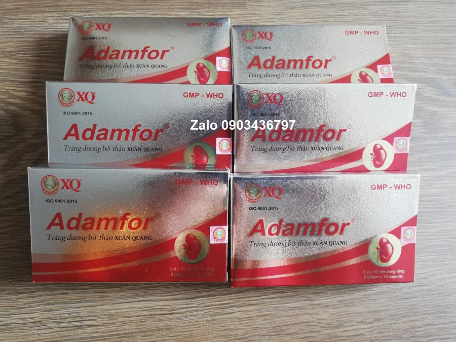 Liệu trình Adamfor tiết kiệm